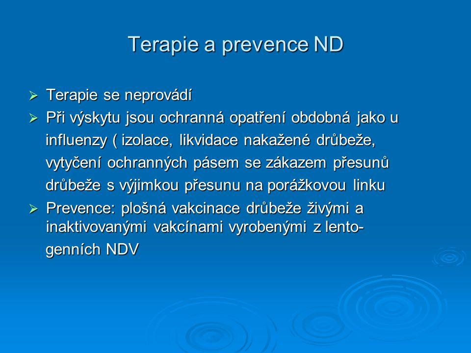 Terapie a prevence ND  Terapie se neprovádí  Při výskytu jsou ochranná opatření obdobná jako u influenzy ( izolace, likvidace nakažené drůbeže, infl