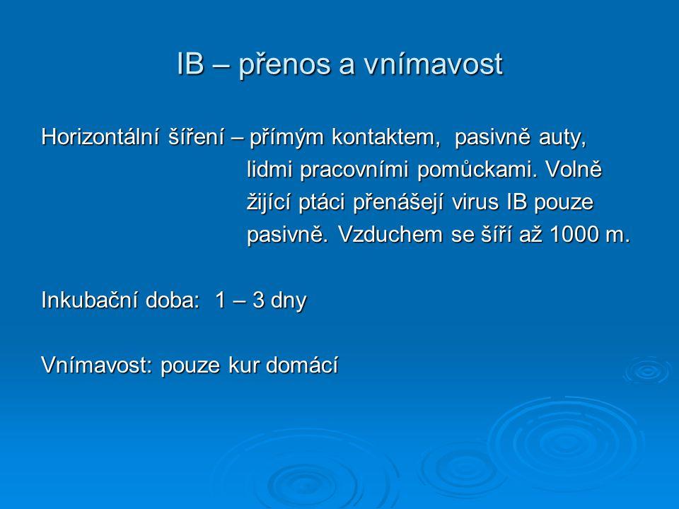 IB – přenos a vnímavost Horizontální šíření – přímým kontaktem, pasivně auty, lidmi pracovními pomůckami. Volně lidmi pracovními pomůckami. Volně žijí