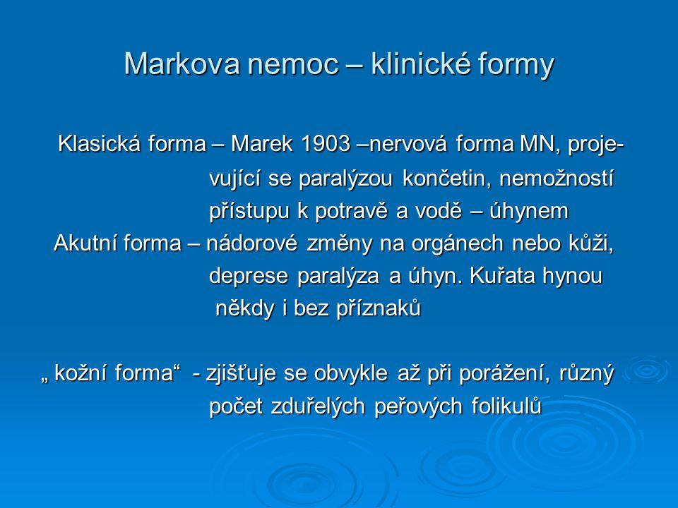Markova nemoc – klinické formy Klasická forma – Marek 1903 –nervová forma MN, proje- Klasická forma – Marek 1903 –nervová forma MN, proje- vující se p