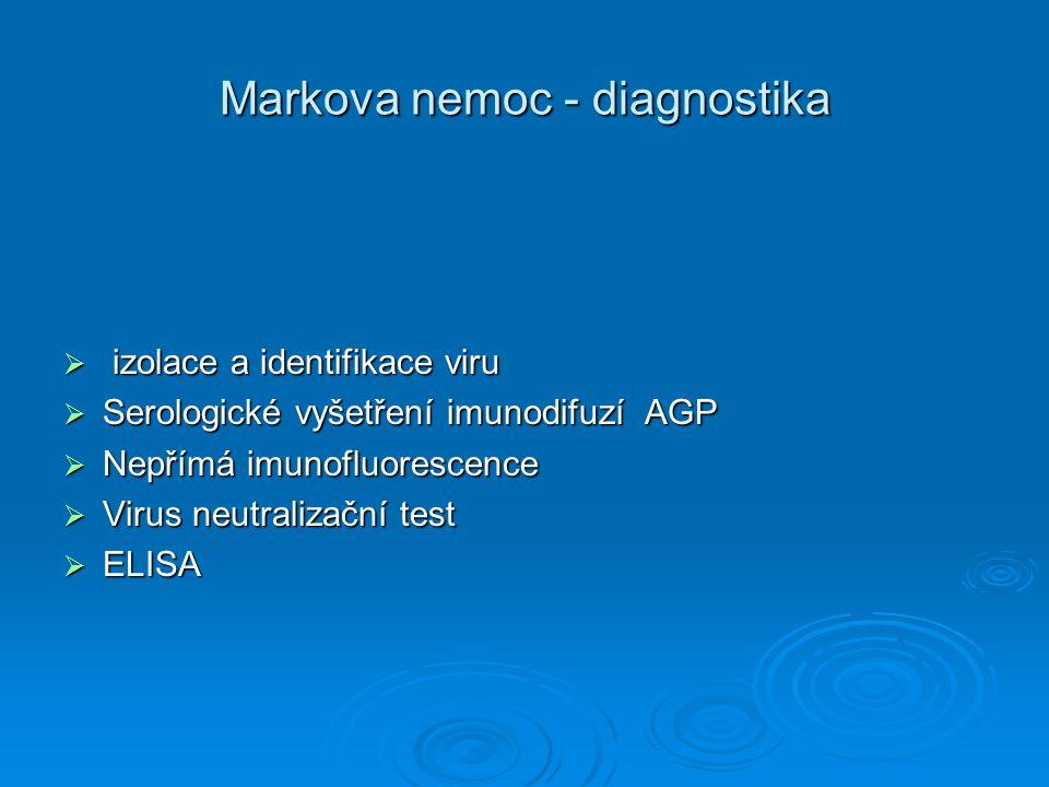 Markova nemoc - diagnostika  izolace a identifikace viru  Serologické vyšetření imunodifuzí AGP  Nepřímá imunofluorescence  Virus neutralizační te