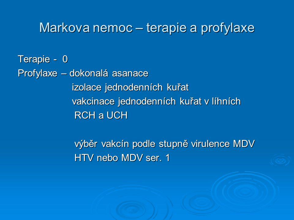 Markova nemoc – terapie a profylaxe Terapie - 0 Profylaxe – dokonalá asanace izolace jednodenních kuřat izolace jednodenních kuřat vakcinace jednodenn
