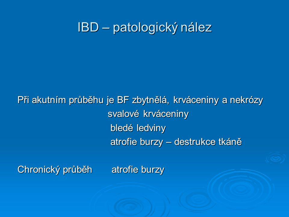 IBD – patologický nález Při akutním průběhu je BF zbytnělá, krváceniny a nekrózy svalové krváceniny svalové krváceniny bledé ledviny bledé ledviny atr