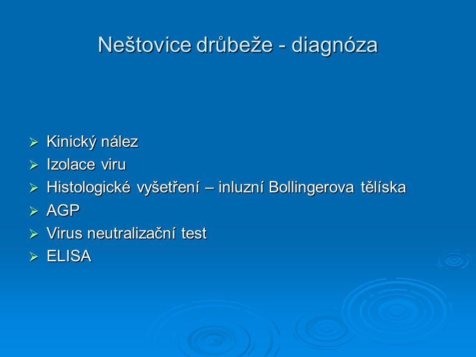 Neštovice drůbeže - diagnóza  Kinický nález  Izolace viru  Histologické vyšetření – inluzní Bollingerova tělíska  AGP  Virus neutralizační test 