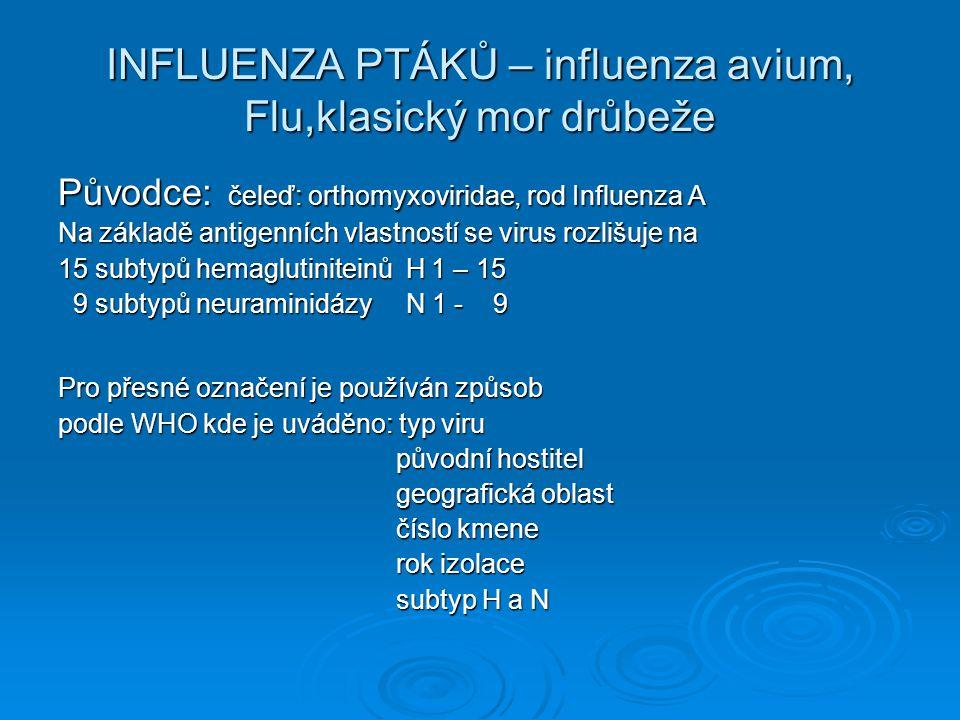 Historie Influezy avium 1878-1900 - diferenciace původce influenzy od bakteriál- 1878-1900 - diferenciace původce influenzy od bakteriál- ních onemocnění – ultrafiltrabilní ních onemocnění – ultrafiltrabilní 1934 - pomnožování viru AI ve vejcích 1934 - pomnožování viru AI ve vejcích 1955 - zařazen jako virus influenza A 1955 - zařazen jako virus influenza A 1959 - první identifikace HPAI viru H5N1 ve Skotsku 1959 - první identifikace HPAI viru H5N1 ve Skotsku 1961 - první izolace viru AI u divokých ptáků v jižní 1961 - první izolace viru AI u divokých ptáků v jižní Africe.