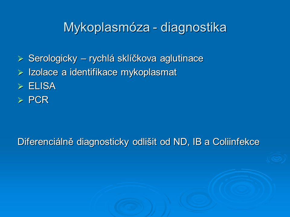 Mykoplasmóza - diagnostika  Serologicky – rychlá sklíčkova aglutinace  Izolace a identifikace mykoplasmat  ELISA  PCR Diferenciálně diagnosticky o