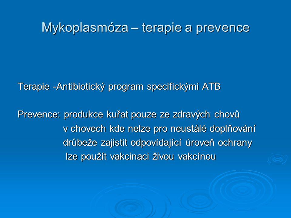Mykoplasmóza – terapie a prevence Terapie -Antibiotický program specifickými ATB Prevence: produkce kuřat pouze ze zdravých chovů v chovech kde nelze