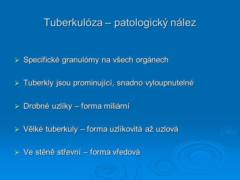 Tuberkulóza – patologický nález  Specifické granulómy na všech orgánech  Tuberkly jsou prominující, snadno vyloupnutelné  Drobné uzlíky – forma mil