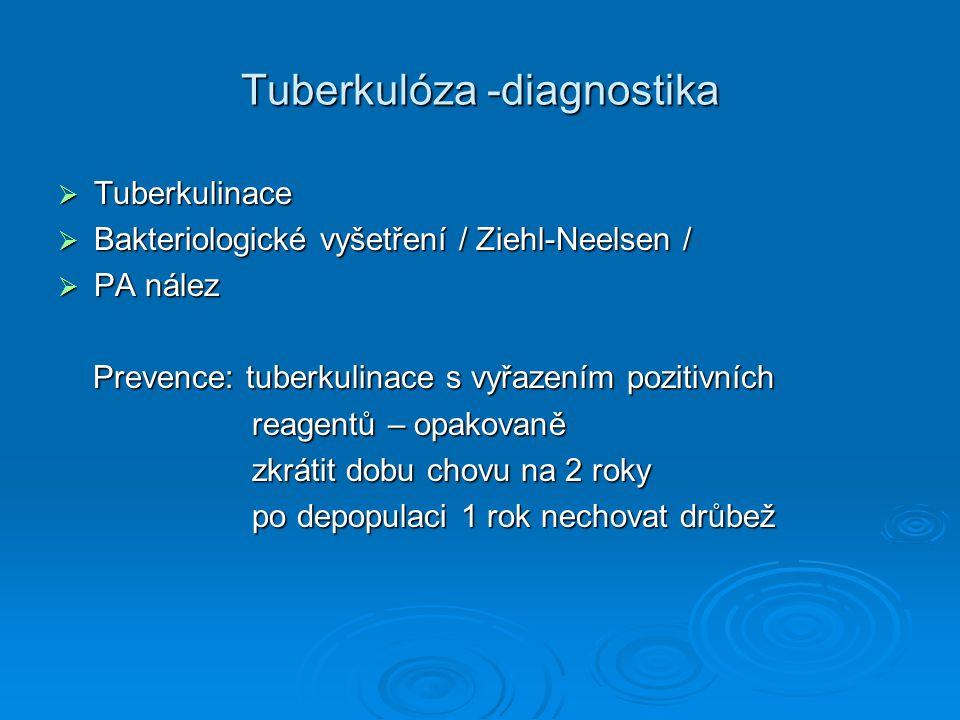 Tuberkulóza -diagnostika  Tuberkulinace  Bakteriologické vyšetření / Ziehl-Neelsen /  PA nález Prevence: tuberkulinace s vyřazením pozitivních Prev