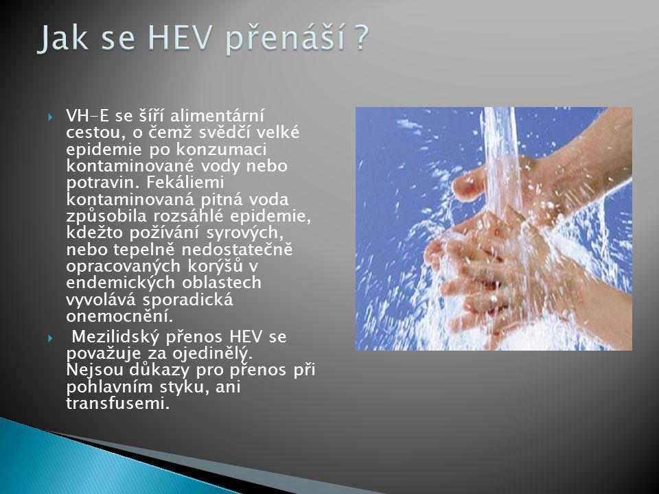  VH-E se šíří alimentární cestou, o čemž svědčí velké epidemie po konzumaci kontaminované vody nebo potravin.