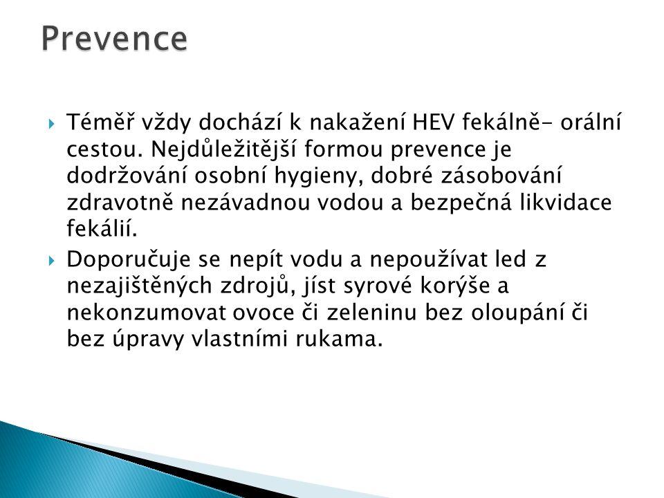  Protože VH-E je virové onemocnění nemají antibiotika při její léčbě žádný význam.