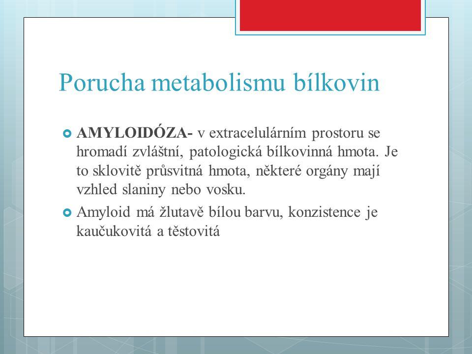 Porucha metabolismu bílkovin  AMYLOIDÓZA- v extracelulárním prostoru se hromadí zvláštní, patologická bílkovinná hmota. Je to sklovitě průsvitná hmot