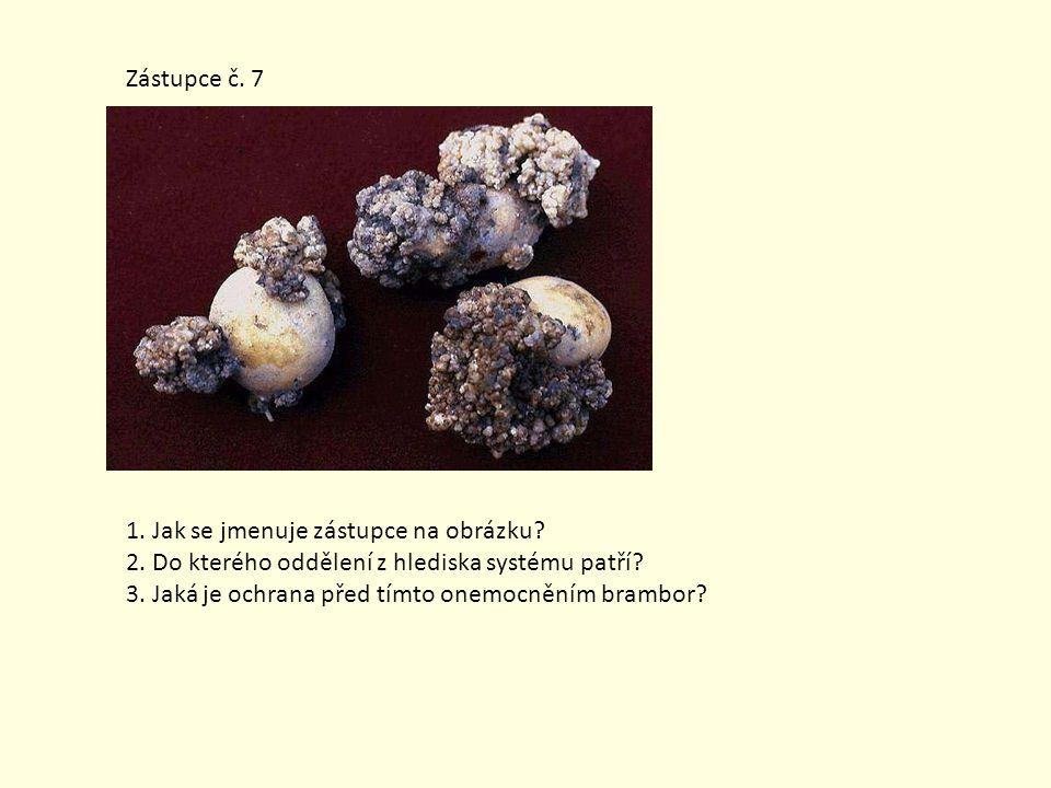 Zdroje a literatura: Holubinka trávozelená.In: Wikipedia: the free encyclopedia [online].