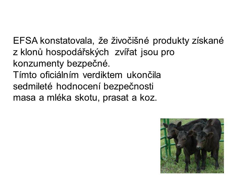EFSA konstatovala, že živočišné produkty získané z klonů hospodářských zvířat jsou pro konzumenty bezpečné. Tímto oficiálním verdiktem ukončila sedmil