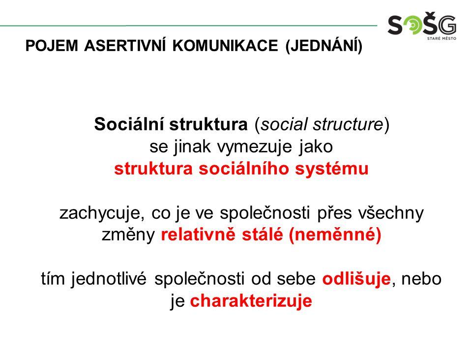 POJEM ASERTIVNÍ KOMUNIKACE (JEDNÁNÍ) Sociální struktura (social structure) se jinak vymezuje jako struktura sociálního systému zachycuje, co je ve společnosti přes všechny změny relativně stálé (neměnné) tím jednotlivé společnosti od sebe odlišuje, nebo je charakterizuje