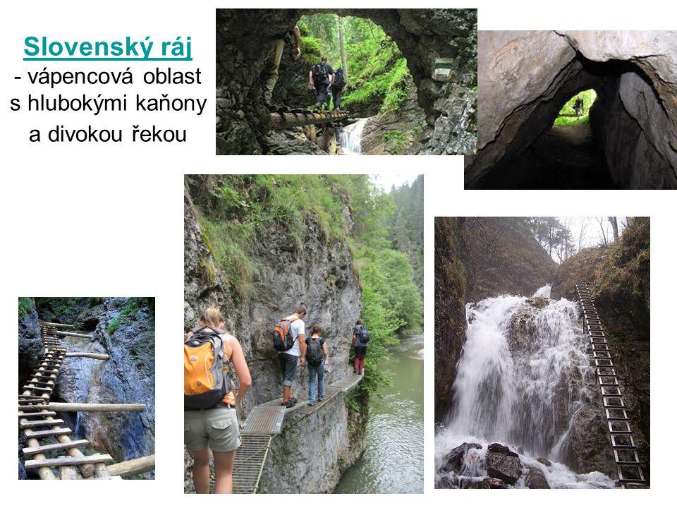 Slovenský ráj - vápencová oblast s hlubokými kaňony a divokou řekou