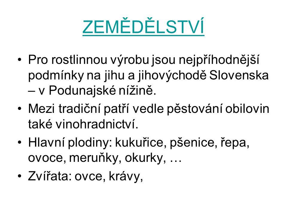 ZEMĚDĚLSTVÍ Pro rostlinnou výrobu jsou nejpříhodnější podmínky na jihu a jihovýchodě Slovenska – v Podunajské nížině.