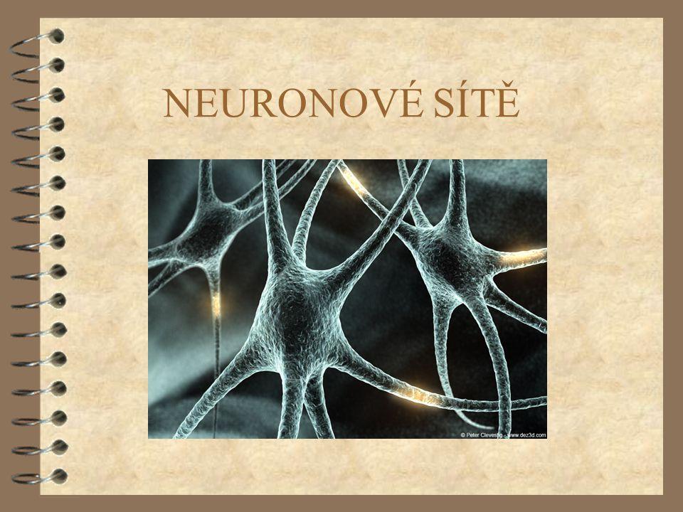 42 NEUROFYZIOLOGICKÁ MOTIVACE