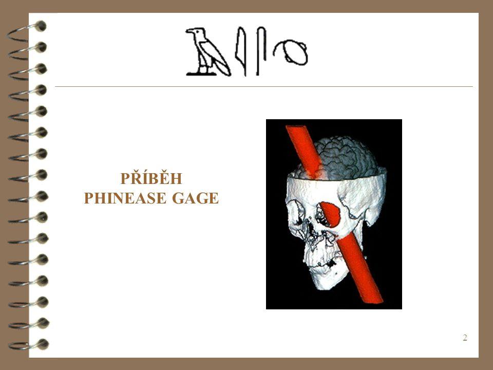 2 PŘÍBĚH PHINEASE GAGE