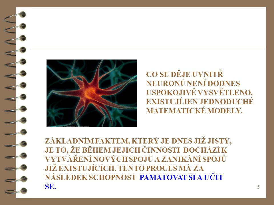 6 NEURON NEURONY VYTVÁŘÍ MOHUTNÉ SÍTĚ, VE KTERÝCH SE INFORMACE (V PODSTATĚ NAŠE MYŠLENÍ) ŠÍŘÍ VE FORMĚ ELEKTROCHEMICKÝCH VZRUCHŮ, DÁVÁ MOZKU JAKO TAKOVÉMU MASIVNÍ PARALELNÍ VÝPOČETNÍ SCHOPNOST.