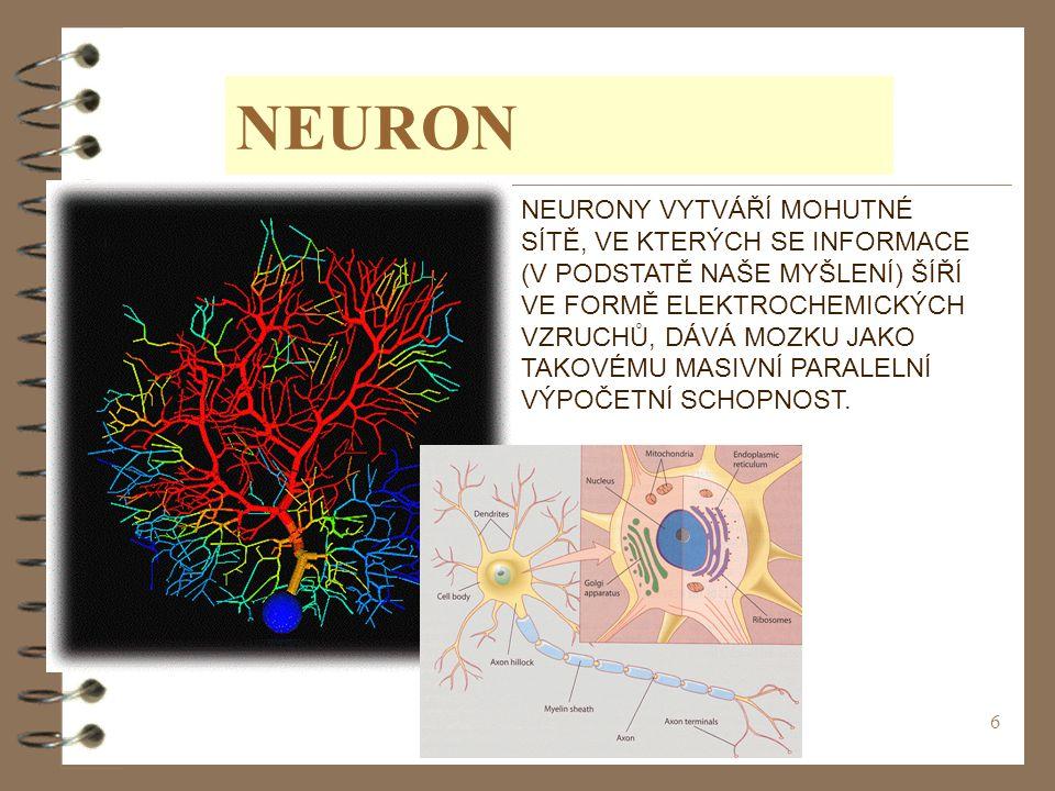 6 NEURON NEURONY VYTVÁŘÍ MOHUTNÉ SÍTĚ, VE KTERÝCH SE INFORMACE (V PODSTATĚ NAŠE MYŠLENÍ) ŠÍŘÍ VE FORMĚ ELEKTROCHEMICKÝCH VZRUCHŮ, DÁVÁ MOZKU JAKO TAKO