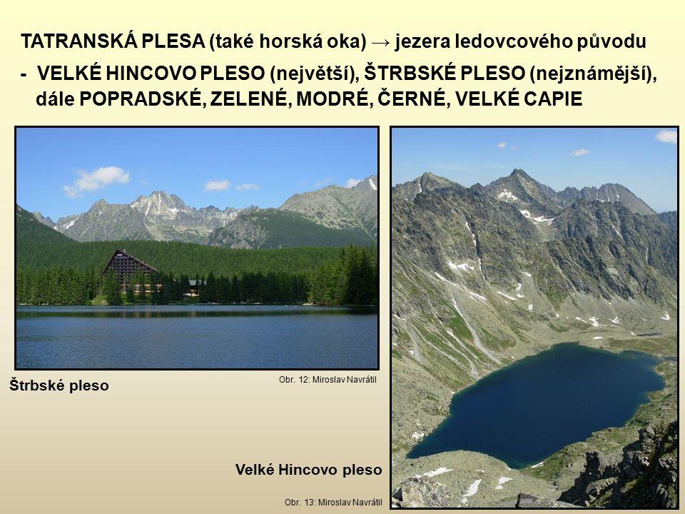 TATRANSKÁ PLESA (také horská oka) → jezera ledovcového původu - VELKÉ HINCOVO PLESO (největší), ŠTRBSKÉ PLESO (nejznámější), dále POPRADSKÉ, ZELENÉ, MODRÉ, ČERNÉ, VELKÉ CAPIE Obr.