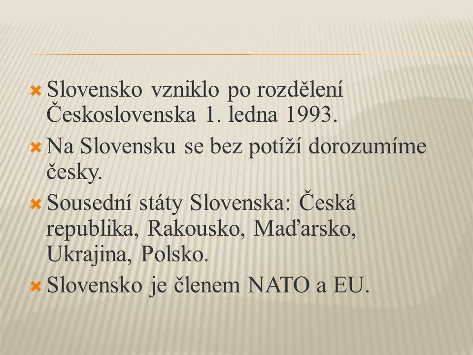  Slovensko vzniklo po rozdělení Československa 1.