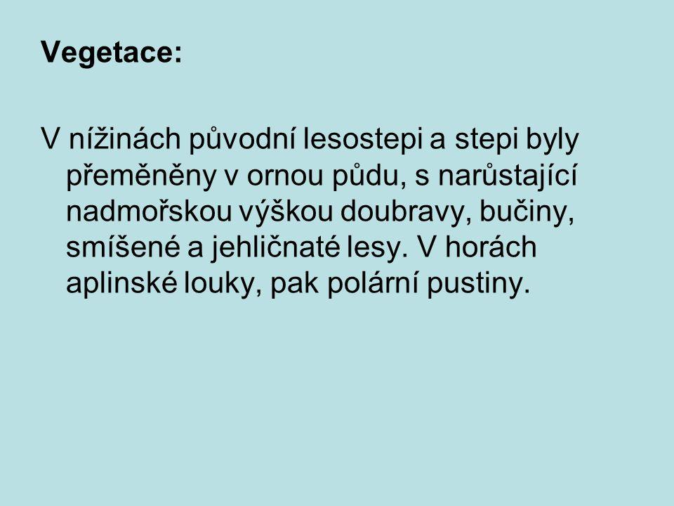 OBYVATELSTVO: tvoří asi z 80% Slováci, 10% Maďaři (při hranicích s Maďarskem jsou většinou), 5% připadá na socializačně a demograficky problémové Rómy.