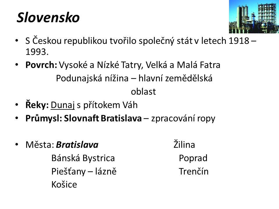Slovensko S Českou republikou tvořilo společný stát v letech 1918 – 1993. Povrch: Vysoké a Nízké Tatry, Velká a Malá Fatra Podunajská nížina – hlavní