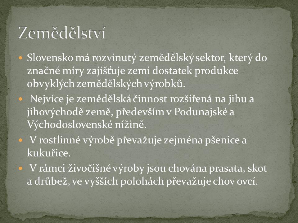Slovensko má rozvinutý zemědělský sektor, který do značné míry zajišťuje zemi dostatek produkce obvyklých zemědělských výrobků.