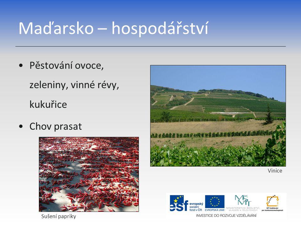 Maďarsko – hospodářství Pěstování ovoce, zeleniny, vinné révy, kukuřice Chov prasat Sušení papriky Vinice