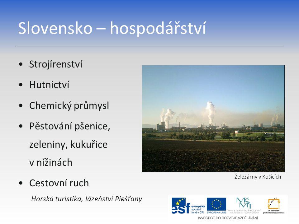 Slovensko – hospodářství Strojírenství Hutnictví Chemický průmysl Pěstování pšenice, zeleniny, kukuřice v nížinách Cestovní ruch Horská turistika, láz