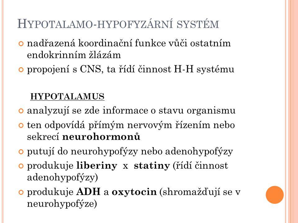 H YPOTALAMO - HYPOFYZÁRNÍ SYSTÉM nadřazená koordinační funkce vůči ostatním endokrinním žlázám propojení s CNS, ta řídí činnost H-H systému HYPOTALAMUS analyzují se zde informace o stavu organismu ten odpovídá přímým nervovým řízením nebo sekrecí neurohormonů putují do neurohypofýzy nebo adenohypofýzy produkuje liberiny x statiny (řídí činnost adenohypofýzy) produkuje ADH a oxytocin (shromažďují se v neurohypofýze)