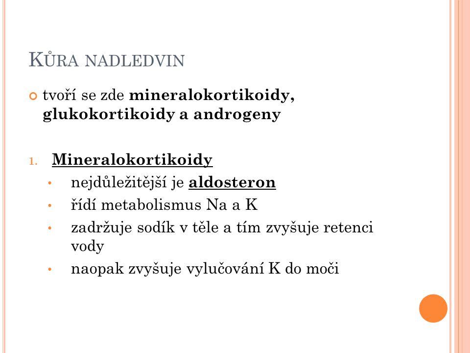 K ŮRA NADLEDVIN tvoří se zde mineralokortikoidy, glukokortikoidy a androgeny 1.