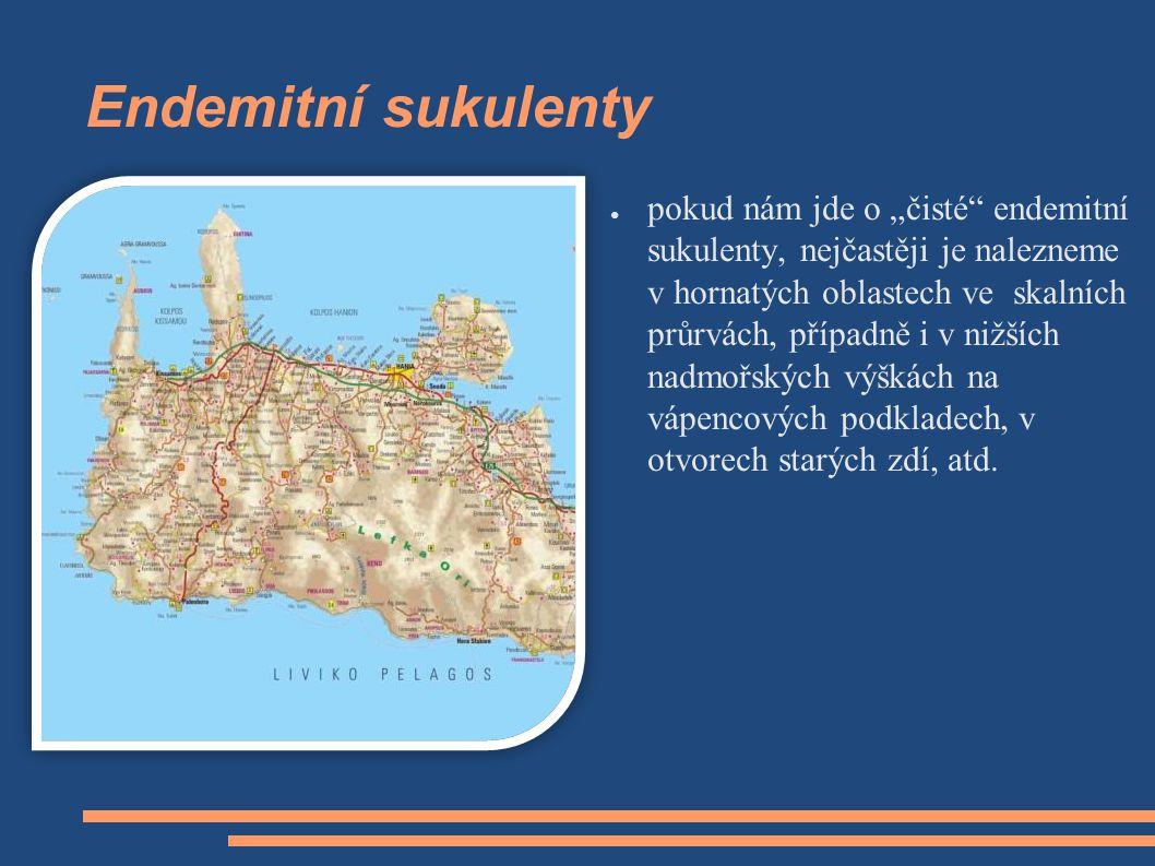 """Endemitní sukulenty ● pokud nám jde o """"čisté"""" endemitní sukulenty, nejčastěji je nalezneme v hornatých oblastech ve skalních průrvách, případně i v ni"""