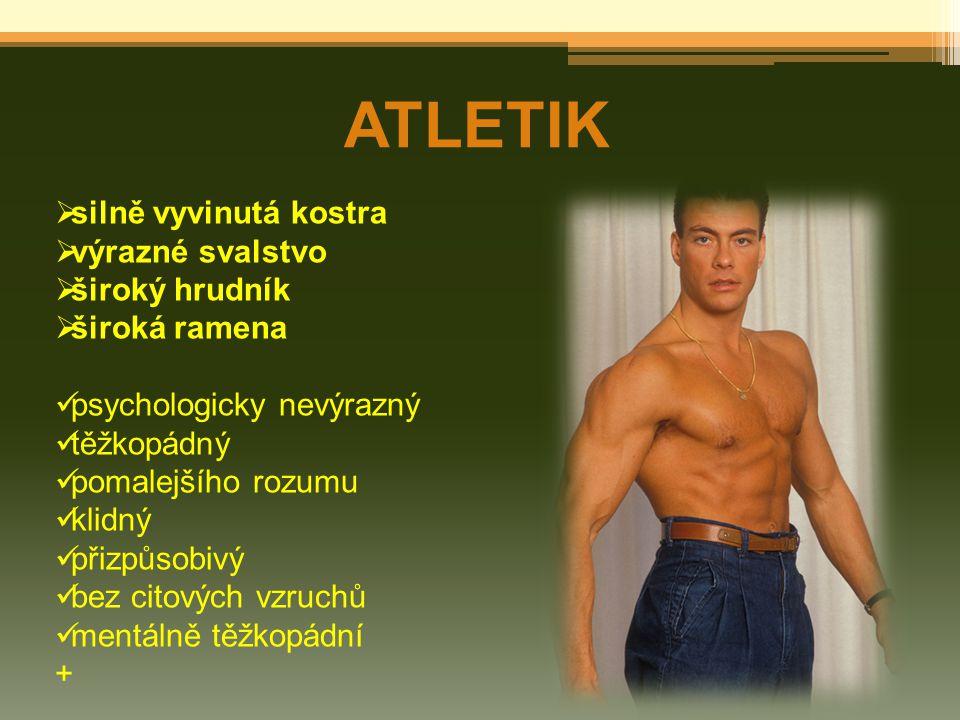 ATLETIK  silně vyvinutá kostra  výrazné svalstvo  široký hrudník  široká ramena psychologicky nevýrazný těžkopádný pomalejšího rozumu klidný přizp