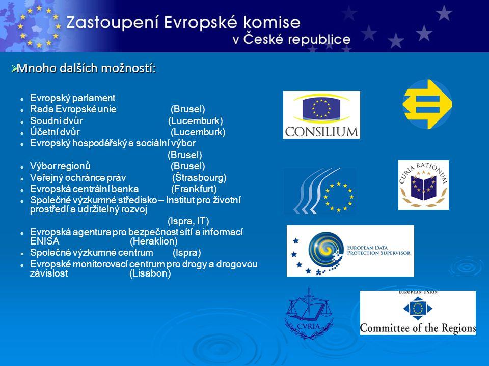  Mnoho dalších možností: Evropský parlament Rada Evropské unie (Brusel) Soudní dvůr (Lucemburk) Účetní dvůr (Lucemburk) Evropský hospodářský a sociální výbor (Brusel) Výbor regionů (Brusel) Veřejný ochránce práv (Štrasbourg) Evropská centrální banka (Frankfurt) Společné výzkumné středisko – Institut pro životní prostředí a udržitelný rozvoj (Ispra, IT) Evropská agentura pro bezpečnost sítí a informací ENISA (Heraklion) Společné výzkumné centrum (Ispra) Evropské monitorovací centrum pro drogy a drogovou závislost (Lisabon)