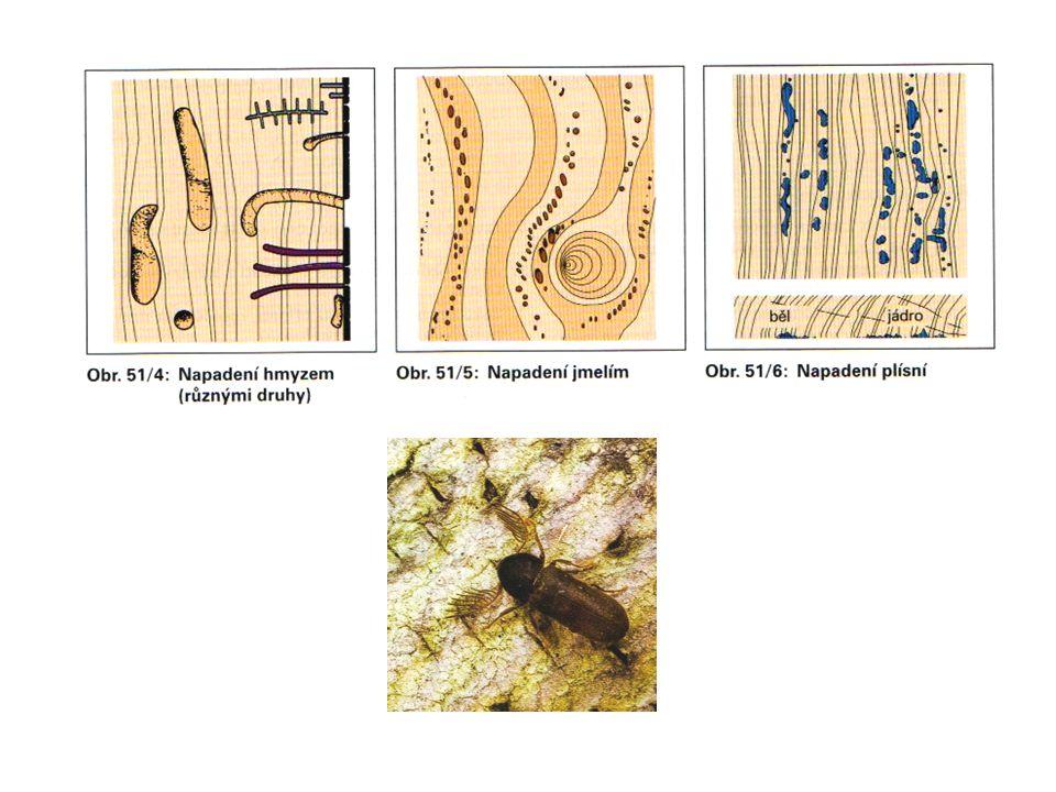 Z hlediska odolnosti lze dřeviny rozdělit: -velmi odolné s trvanlivostí více něž 25 let (tis, kaštan jedlý, dub, jilm habrolistý), -odolné s trvanlivostí 10 – 25 let ( borovice, limba, modřín, olše) -málo odolné ( bříza, buk, osika, javor, jasan, topol).