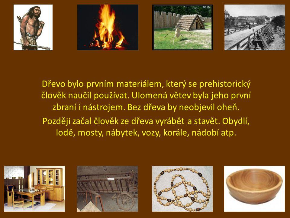 Dřevo bylo prvním materiálem, který se prehistorický člověk naučil používat. Ulomená větev byla jeho první zbraní i nástrojem. Bez dřeva by neobjevil