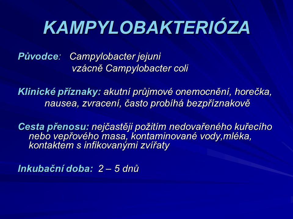 KAMPYLOBAKTERIÓZA Původce: Campylobacter jejuni vzácně Campylobacter coli vzácně Campylobacter coli Klinické příznaky: akutní průjmové onemocnění, hor