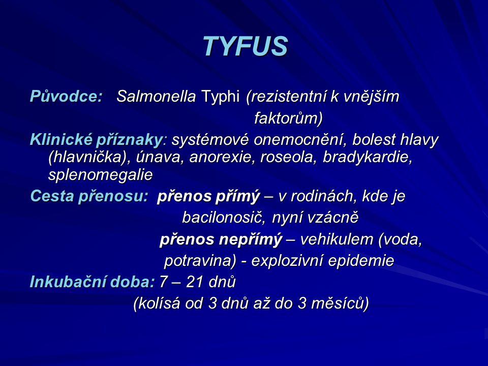 TYFUS Původce: Salmonella Typhi (rezistentní k vnějším faktorům) faktorům) Klinické příznaky: systémové onemocnění, bolest hlavy (hlavnička), únava, a