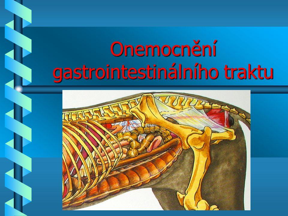 Gastroentrologie Gastroentrologie b Syndrom dysfágie b Syndrom kolika b Syndrom průjem