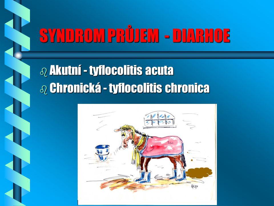 SYNDROM PRŮJEM - DIARHOE b Akutní - tyflocolitis acuta b Chronická - tyflocolitis chronica
