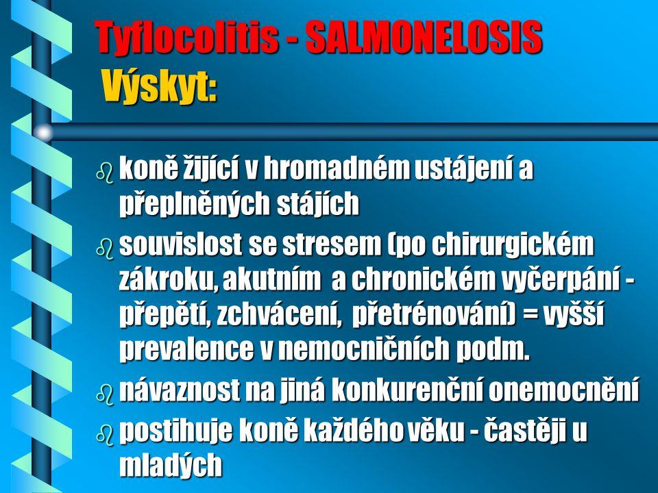 Tyflocolitis - SALMONELOSIS Výskyt: b koně žijící v hromadném ustájení a přeplněných stájích b souvislost se stresem (po chirurgickém zákroku, akutním