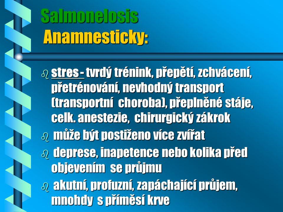 Salmonelosis Anamnesticky: b stres - tvrdý trénink, přepětí, zchvácení, přetrénování, nevhodný transport (transportní choroba), přeplněné stáje, celk.