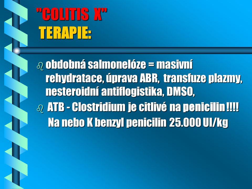 COLITIS X TERAPIE: b obdobná salmonelóze = masivní rehydratace, úprava ABR, transfuze plazmy, nesteroidní antiflogistika, DMSO, b ATB - Clostridium je citlivé na penicilin !!!.