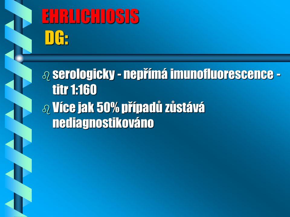 EHRLICHIOSIS DG: b serologicky - nepřímá imunofluorescence - titr 1:160 b Více jak 50% případů zůstává nediagnostikováno