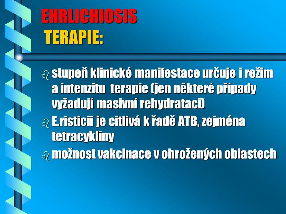 EHRLICHIOSIS TERAPIE: b stupeň klinické manifestace určuje i režim a intenzitu terapie (jen některé případy vyžadují masivní rehydrataci) b E.risticii
