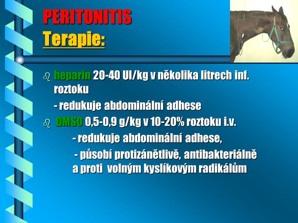 PERITONITIS Terapie: b heparin 20-40 UI/kg v několika litrech inf. roztoku - redukuje abdominální adhese - redukuje abdominální adhese b DMSO 0,5-0,9