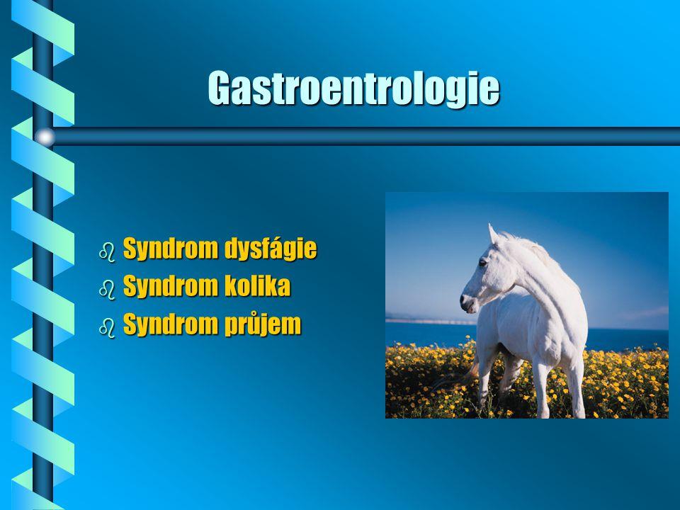 Syndrom DYSFÁGIE = nechutenství nebo obtíže s příjmem krmiva b Etiologie: NEMOCI DUTINY ÚSTNÍ A JÍCNU b Klin.