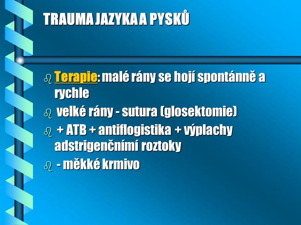 TRAUMA JAZYKA A PYSKŮ b Terapie: malé rány se hojí spontánně a rychle b velké rány - sutura (glosektomie) b + ATB + antiflogistika + výplachy adstrigenčnímí roztoky b - měkké krmivo